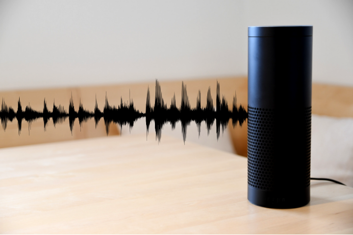 Exploring Voice Search in 2019